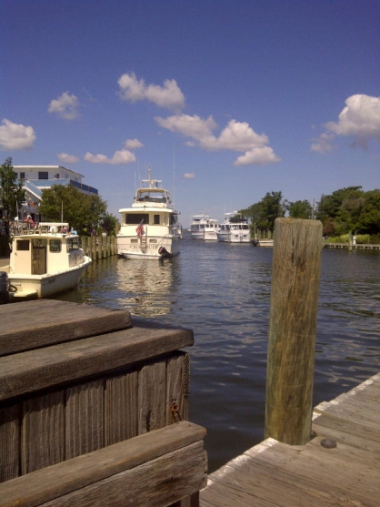 View from the dock at the Pines, Fire Island